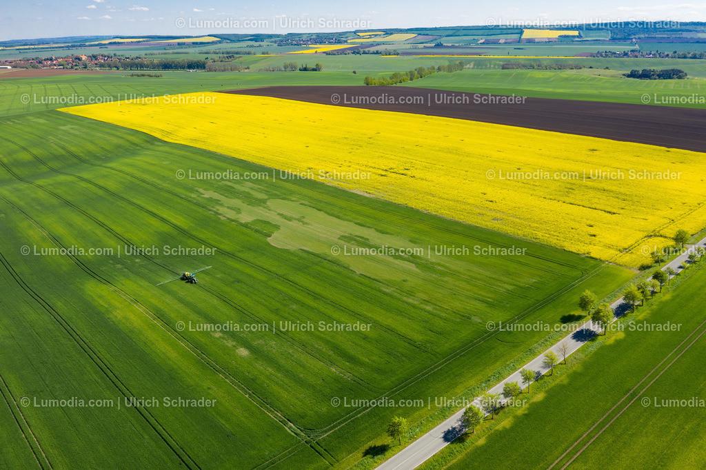 10049-50985 - Frühlingslandschaft bei Aderstedt