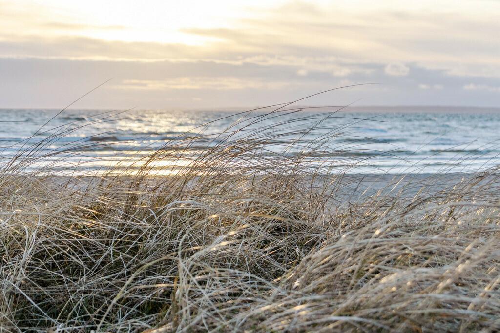 Sonnenaufgang an der Ostsee | Strandhafer und Wellen