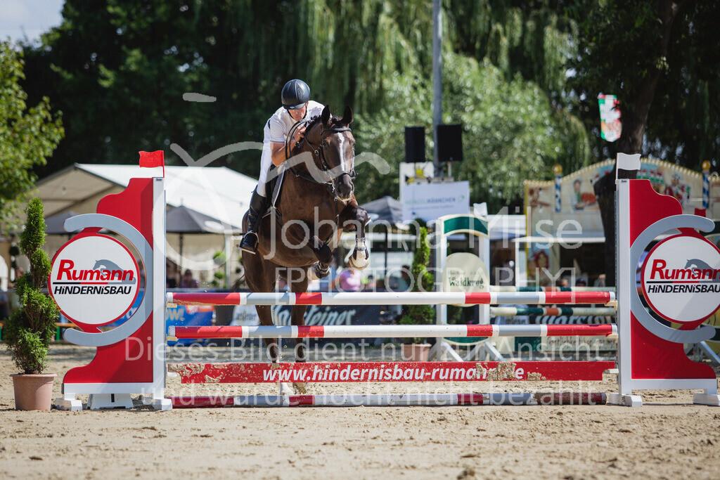 200819_Delbrück_Sprpf-A_2_1-254   Delbrück Masters 2020 Springpferdeprüfung Kl. A** 4-6jährige Pferde