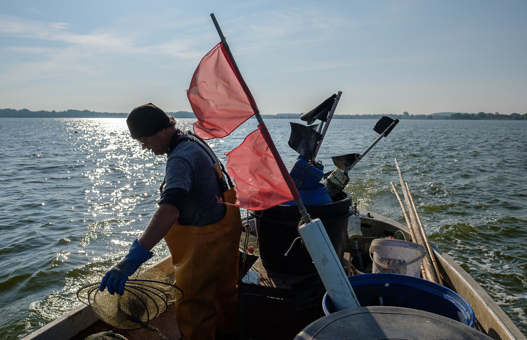 Matthias Nanz – ein Fischer an der Schlei © Holger Rüdel | Matthias Nanz aus Schleswig ist einer der letzten Berufsfischer an der Schlei. Das Foto zeigt ihn auf seinem Boot frühmorgens Ende Mai beim Ausbringen einer Aalreuse auf der Großen Breite der Schlei.