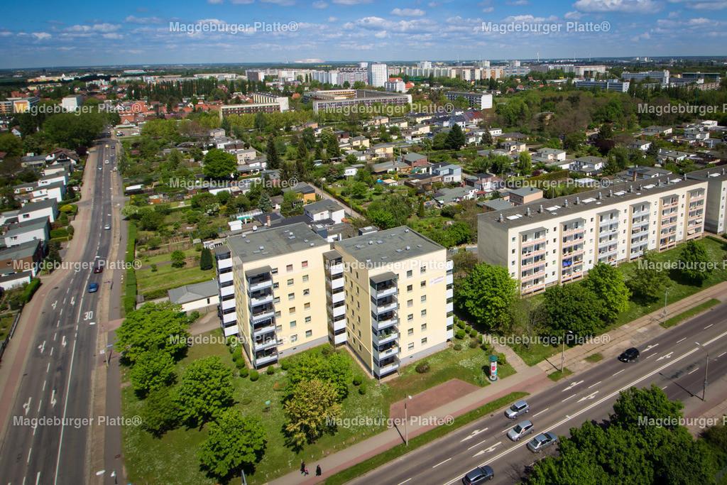 Stadtfelder Olvenstedter Graseweg-2298