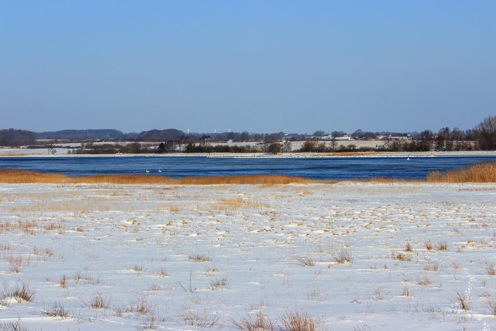 Winnemark an der Schlei | Winter in Winnemark an der Schlei