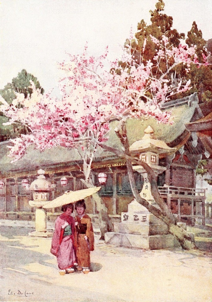 Du Cane_ Ella (1874-1943) - Flowers _ Gardens of Japan 1908 - Time of the plum blossoms