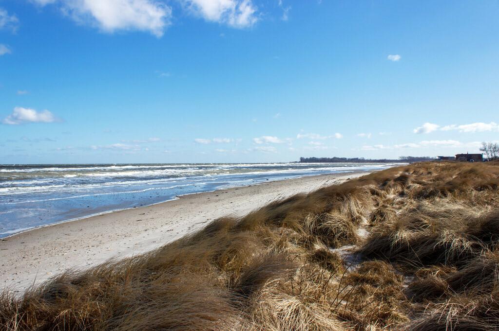 Strand in Kronsgaard | Strand in Kronsgaard