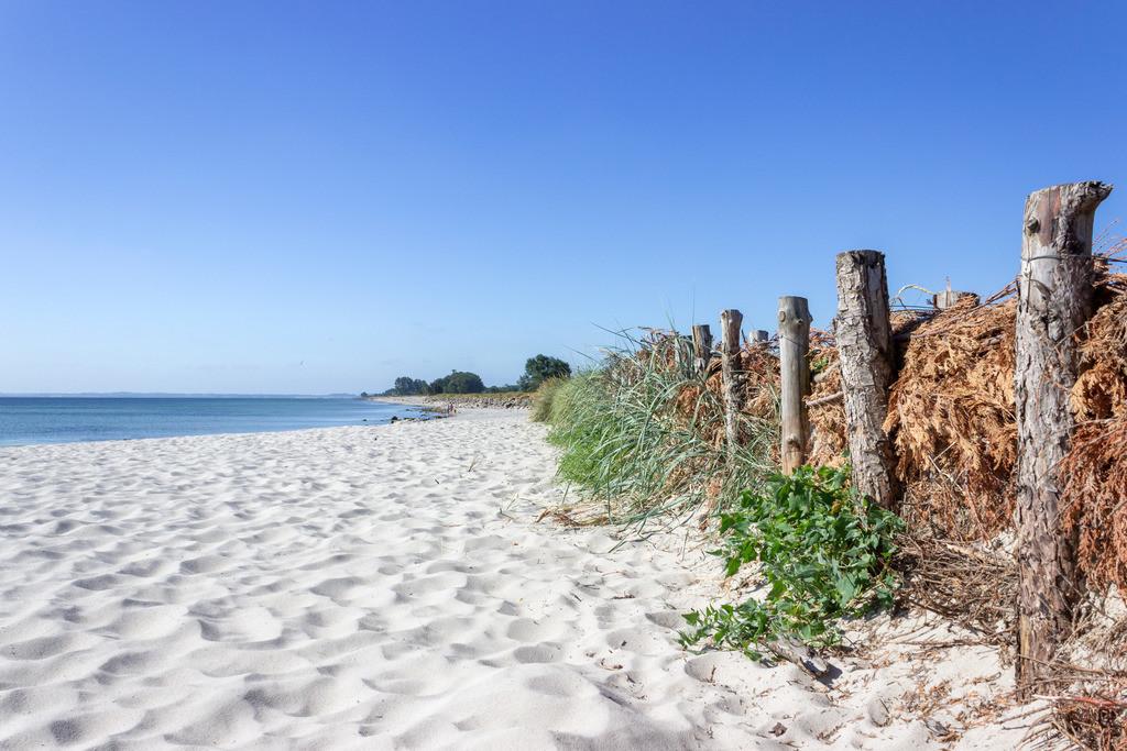 Strand in Damp | Strand in Damp im Frühling