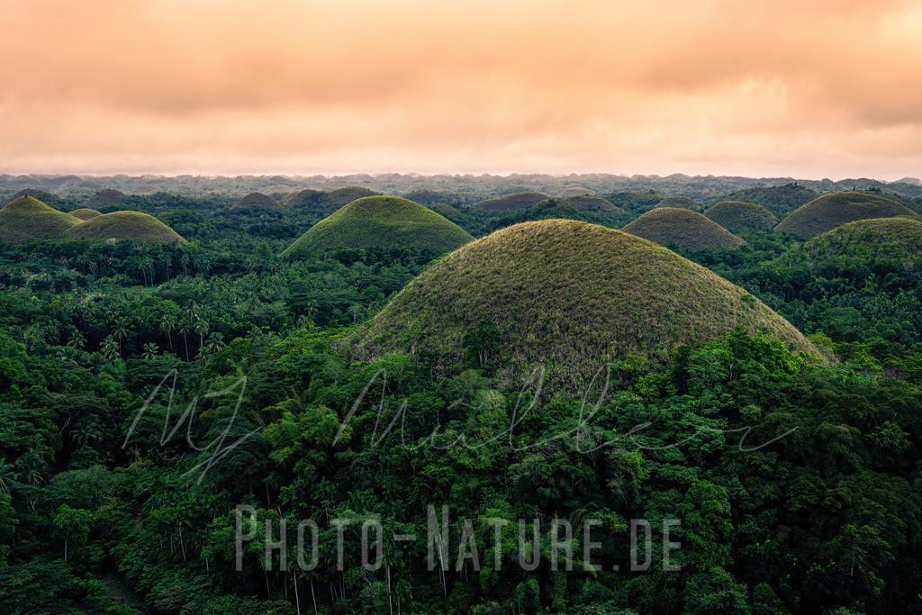 Die grünen Hügel Bohols   Die aus Korallen geformten Hügel Bohols mit grüner Vegetation