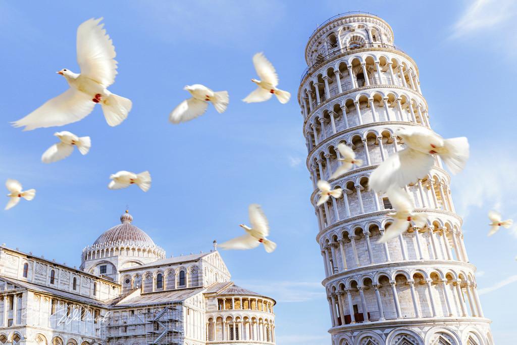 20180919-082215 PISA - Der schiefe Turm 012-1_max