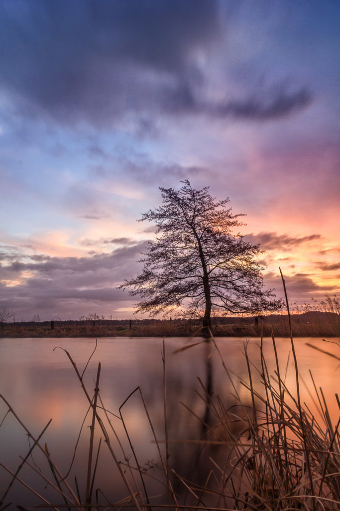 Sonnenaufgang an der Hamme   Tolle Farben bei Sonnenaufgang an der Hamme bei Worpswede.