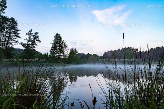 Bilder-aus_der_Natur3
