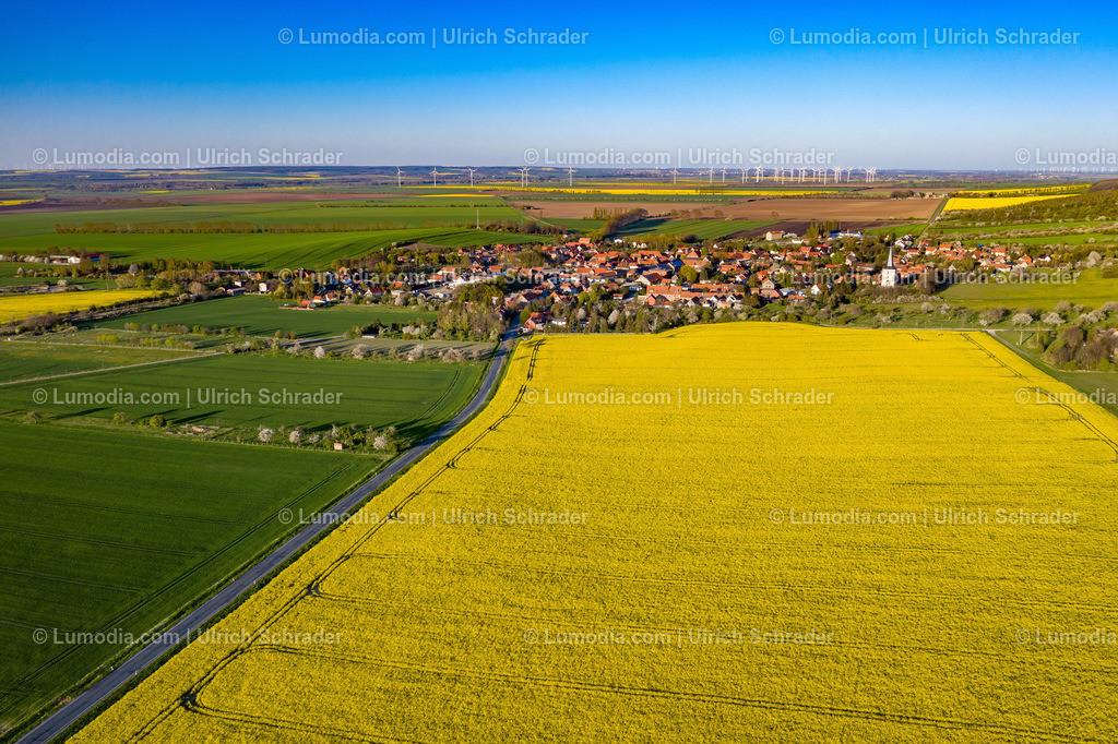 10049-50938 - Blick auf Eilenstedt