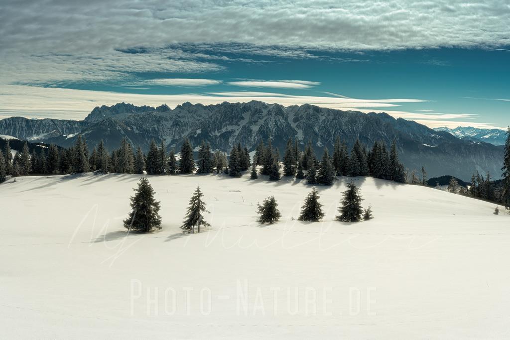 In den winterlichen Chiemgauer Alpen | Schöne Anordnung von Bäumen mit den Chiemgauer Alpen im HIntergrund