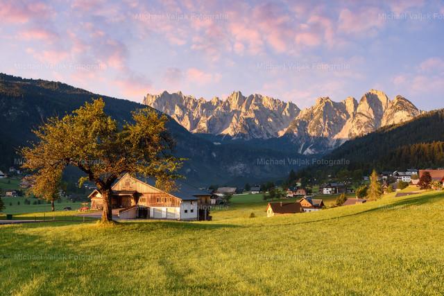 Im Gosautal in Österreich   Frühmorgens im Gosautal als gerade die Sonne über den Berg kommt, mit Blick auf den Gosaukamm.