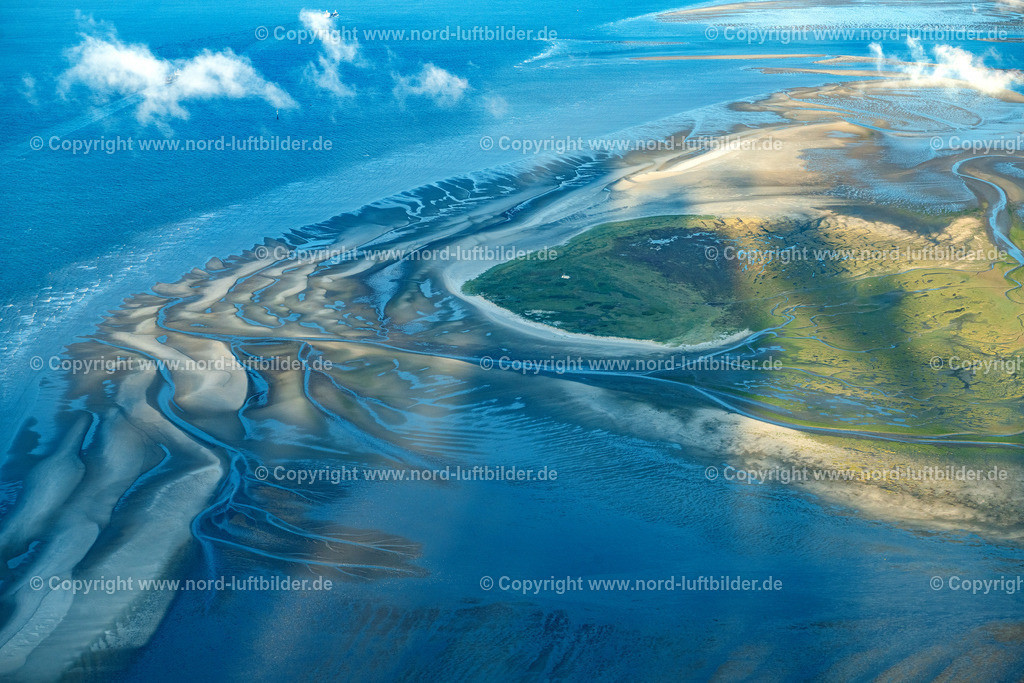 Cuxhaven_Hamburger_Wattenmeer_Scharhörnriff_ELS_3657300820 | NIGEHöRN 30.08.2020 Wattenmeer Sandbänke vor der Nordseeküste von Cuxhaven, Riff auf Bau im Hamburger Wattenmeer vor Nigehörn und Scharhörn im Bundesland Hamburg, Deutschland. // Wadden Sea sandbanks off the North Sea coast of Cuxhaven, reef on construction in the Hamburg Wadden Sea in front of Nigehoern and Scharhoern in the state Hamburg, Germany. Foto: Martin Elsen