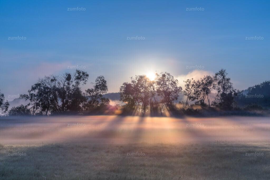 0-130721_0432-5759-66 | --Dateigröße 5575 x 3717 Pixel-- Nebelschwaden auf Wiese an der Feisneck zum Sonnenaufgang.