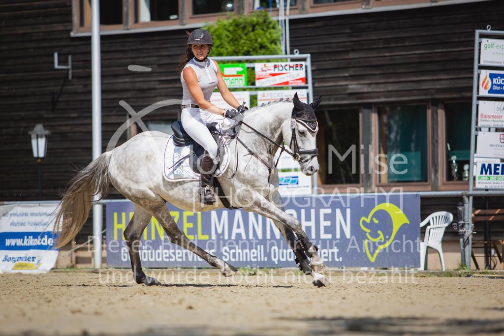 200819_Delbrück_Sprpf-A_2_1-228 | Delbrück Masters 2020 Springpferdeprüfung Kl. A** 4-6jährige Pferde