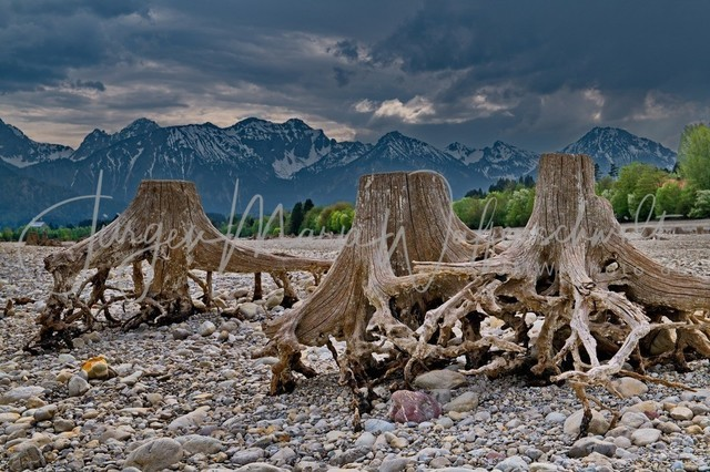1026022_Forgensee_JMW_300