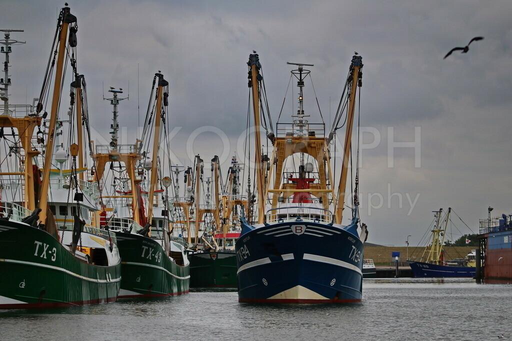 Fischerboote im Hafen von Oudeschild | Oudeschild ist die Heimat der Fischereiflotte von Texel und die drittgrößte Stadt der Gemeinde Texel. Sonntags gegen 22 Uhr fährt die Fischereiflotte von Oudeschild aus, um auf See zu fischen.