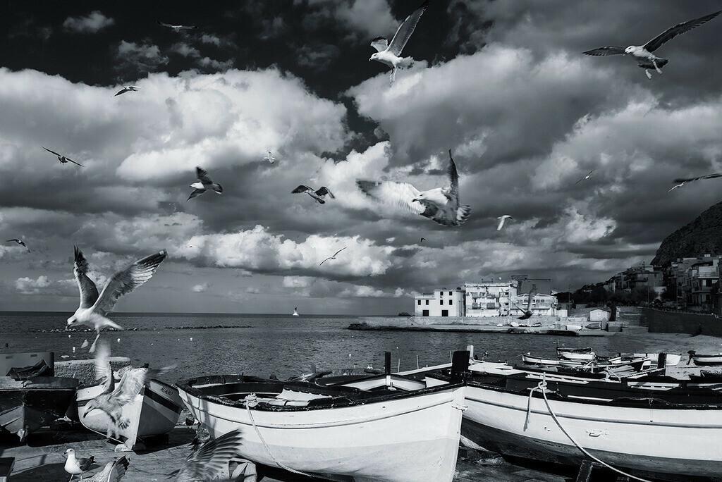 Spiaggia Cammareddi | Fischerboote mit Möwen am Strand von Astra, Sizilien