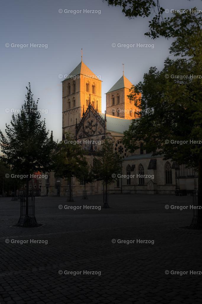 Dom erwacht | Aus der Reihe Münster erwacht