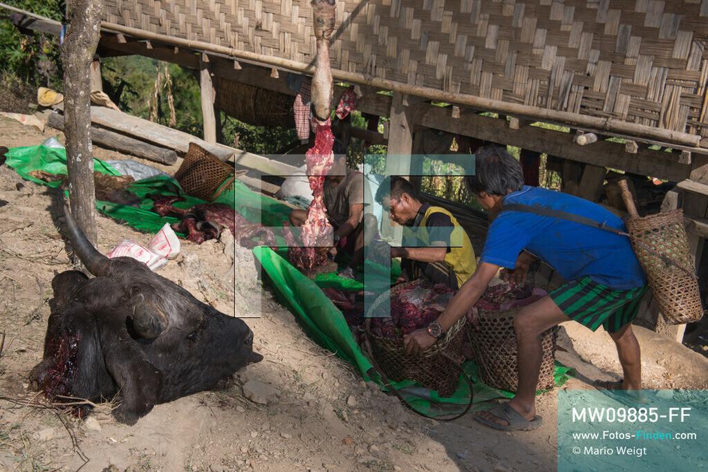 MW09885-FF   Myanmar   Mindat   Reportage: Mindat im Chin State   Schlachtung eines Mithun (Wildochse) als Opfergabe für eine schamanische Zeremonie oder besondere Feierlichkeit in An Laung, Bergdorf der Volksgruppe der Chin.   ** Feindaten bitte anfragen bei Mario Weigt Photography, info@asia-stories.com **
