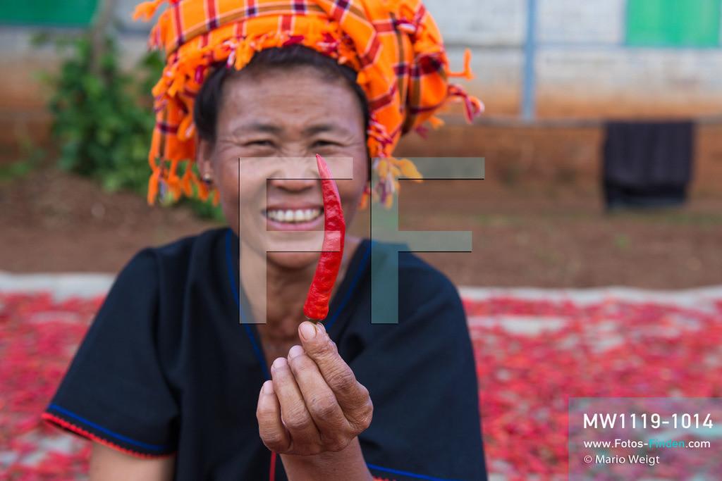 MW1119-1014   Myanmar   Shan State   Reportage: Manche mögen's scharf   Frau der Pa-O-Ethnie mit einer roten Chilischote. Chili wird als Gewürz, ob als ganze Schote, Flocken oder Pulver, in vielen Küchen verwendet.   ** Feindaten bitte anfragen bei Mario Weigt Photography, info@asia-stories.com **