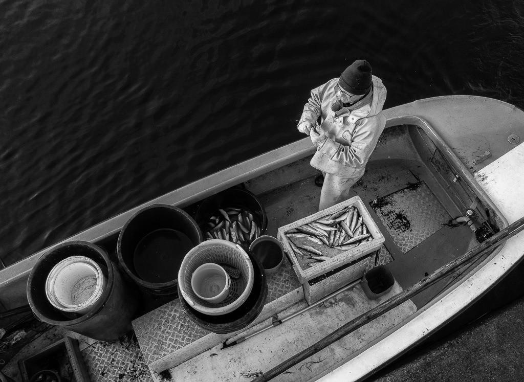 Matthias Nanz – ein Fischer an der Schlei © Holger Rüdel   Matthias Nanz aus Schleswig ist einer der letzten Berufsfischer an der Schlei. Mit seinem Boot fährt Matthias Nanz vom Liegeplatz in Missunde zu den Fanggründen in der Schlei.