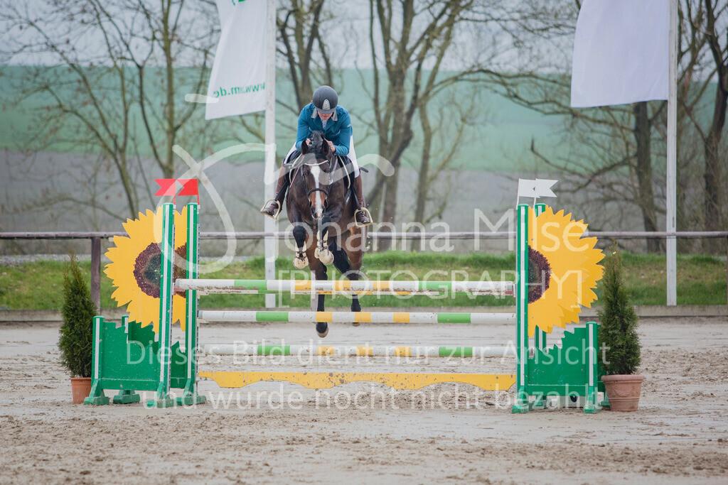 190404_Frühlingsfest_Sprpf-L-112 | Frühlingsfest Herford 2019 Springpferdeprüfung Kl. L