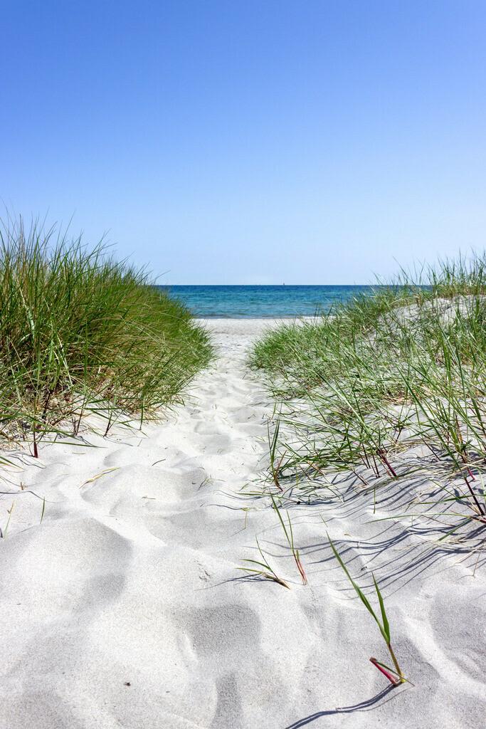 Frühling an der Ostsee | Weg an den Strand in Kronsgaard
