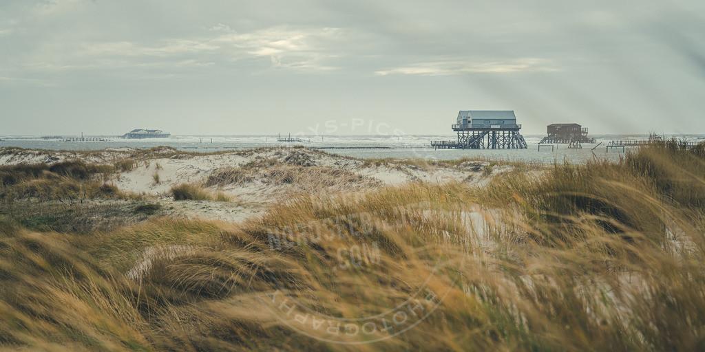 _MGB1961 | Strand im Winter