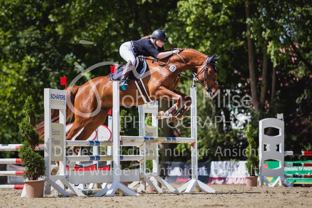 200819_Delbrück_Sprpf-A_2_1-213 | Delbrück Masters 2020 Springpferdeprüfung Kl. A** 4-6jährige Pferde