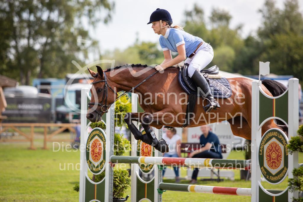 190719_LC_SprPf-A-027 | Lopshorn Classics 2019 Springpferdeprüfung Kl. A** 4-5 jährige Pferde