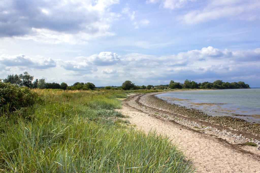 Strand in Habernis | Sandstrand in Habernis im Sommer