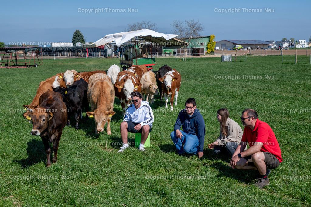 DSC_9944 | Bensheim, Schwanheim, FamilieSchweikert in Schwanheim nach 50 Jahren Viehhaltung jetzt mit ihren Rindern auf die Weiden, ,, Bild: Thomas Neu