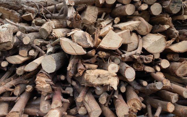 Holzvorrat | Stapel frisch gesägter Holzscheite