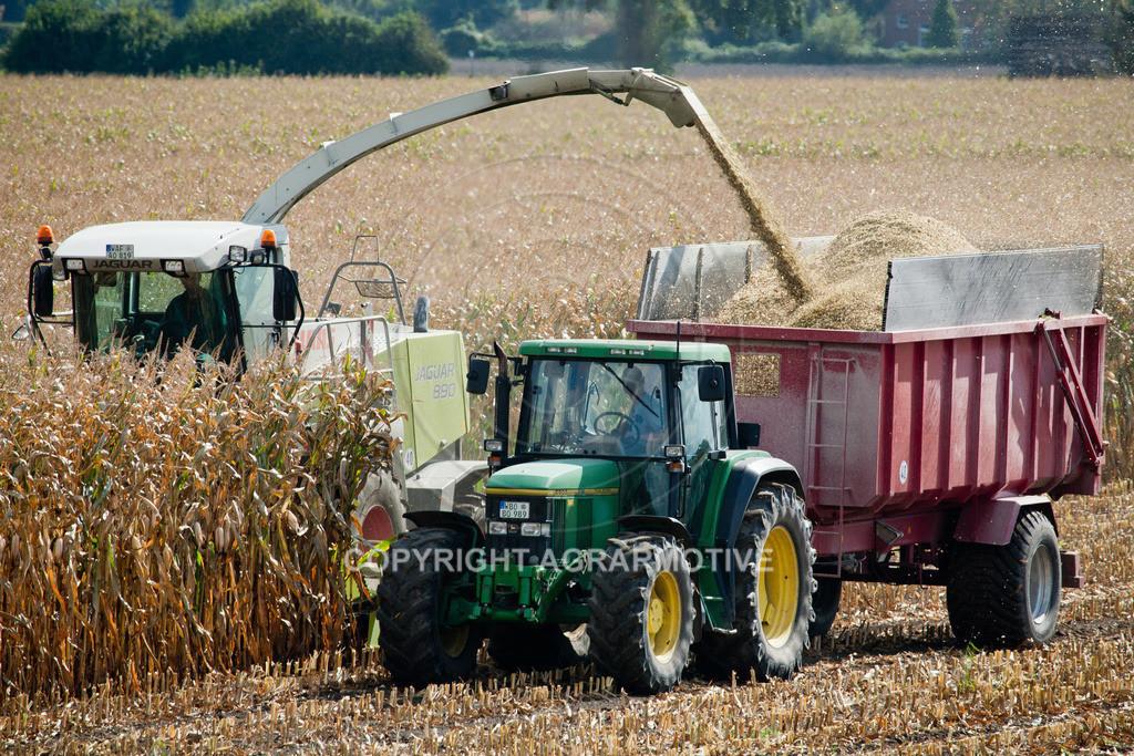 20080914-IMG_9053 | Silomais wird gehäckselt - AGRARFOTO Bilder aus der Landwirtschaft