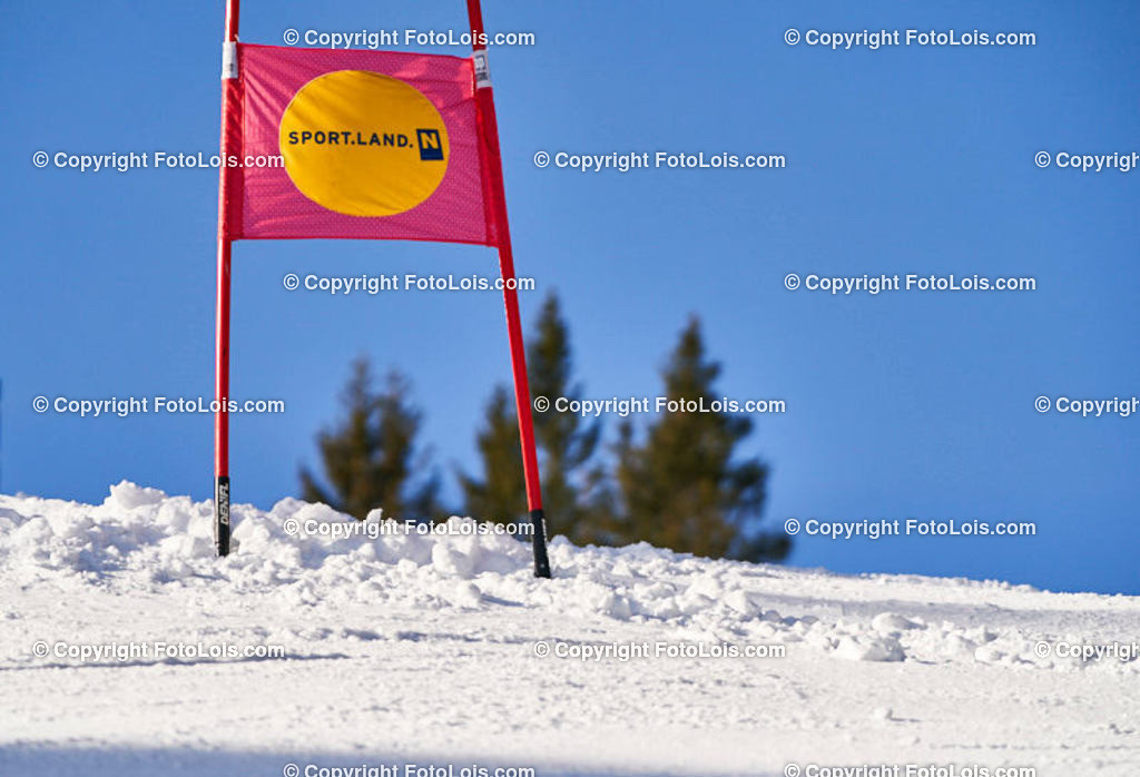 0050_KinderLM-RTL_Trattenbach | (C) FotoLois.com, Alois Spandl, NÖ Landesmeisterschaft KINDER in Trattenbach am Feistritzsattel Skilift Dissauer, Sa 15. Februar 2020.