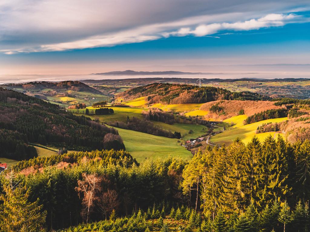 Schwarzwald | Blick vom Hünersedel auf den Schwarzwald bei Freiamt