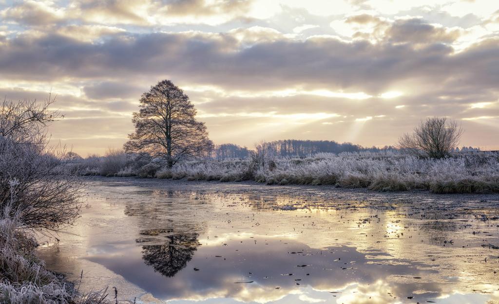 Winter am Kirchdammgraben | Winterliche Landschaft am Kirchdammgraben in Osterholz-Scharmbeck.
