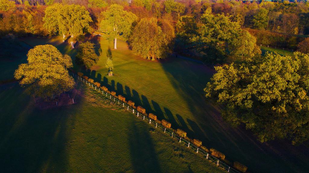 Jersbek Park | Luftaufnahme vom Barockpark in Jersbek, Stormarn