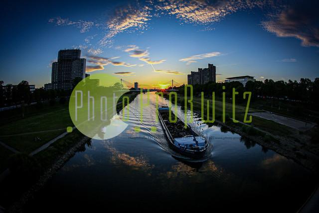 Sonnenuntergang am Neckar | Mannheim. 28JUL20 | Mannheim in der Abendsonne am Neckar. Sonnenuntergang. Mit Neckaruferbebauung und dem Collins Center (links)   BILD- ID 2123 | Bild: Photo-Proßwitz 27JUL20