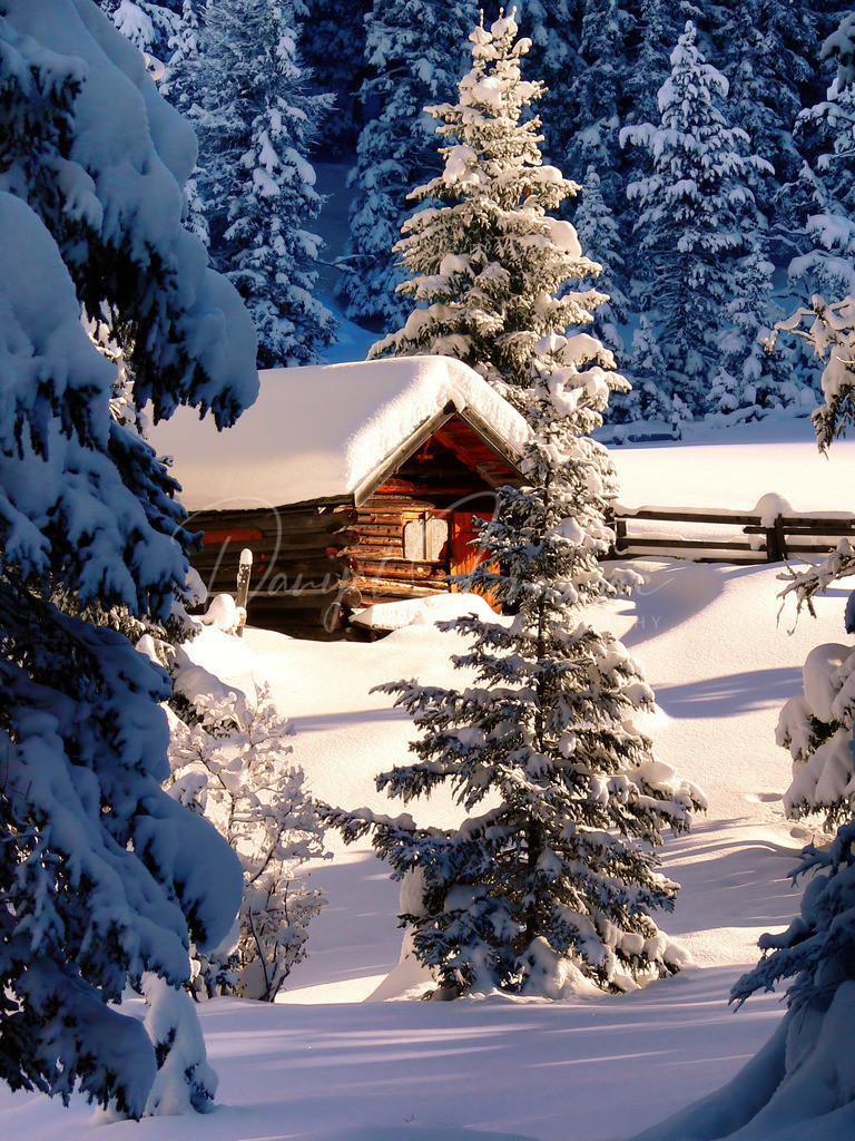Winter Wonderland | Wunderschöner Winter in Nauders am Reschenpass