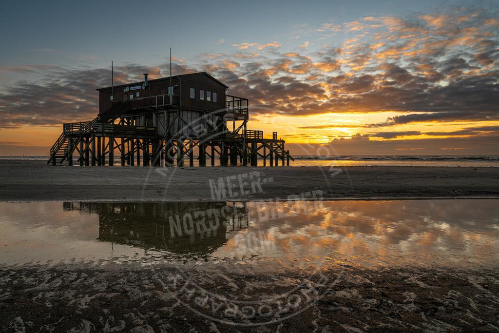_MGB2210 | Sonnenuntergang im Spiegelbild der Silbermöwe
