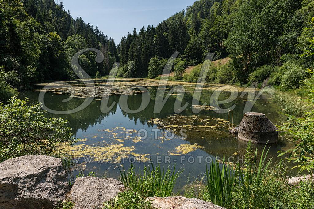 Etang de Bollement, Saint-Brais (JU) | Am Anfang der Combe Tabeillon befindet sich der Etang de Bollement der ein Naturschutzgebiet ist, Saint-Brais im Kanton Jura.