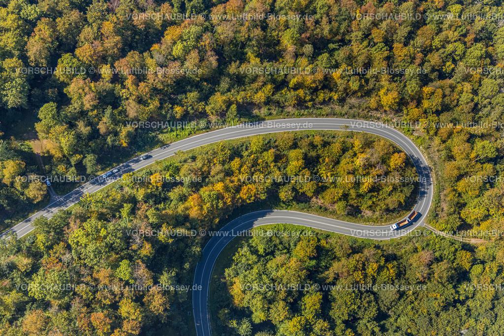 Beverungen200911485Jakobsberg_L838   Luftbild, Serpentinenstraße im Waldgebiet, nördlich von Jakobsberg, Beverungen, Ostwestfalen-Lippe, Nordrhein-Westfalen, Deutschland