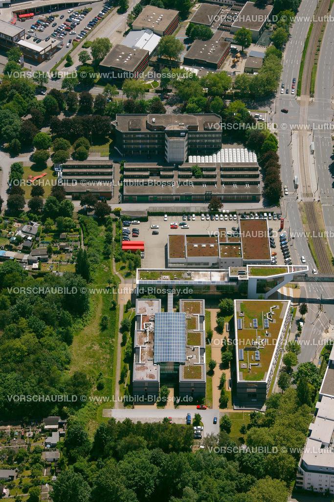 ES10058553 |  Essen, Ruhrgebiet, Nordrhein-Westfalen, Germany, Europa, Foto: hans@blossey.eu, 29.05.2010