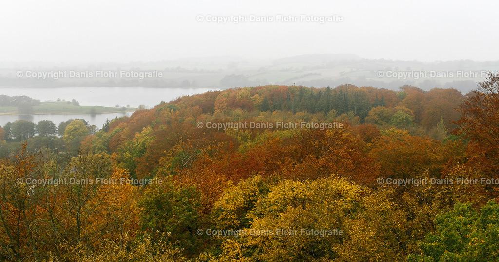 Plöner See mit Herbstwald | Ein BLick auf den Plöner See mit Herbstlichem Wald