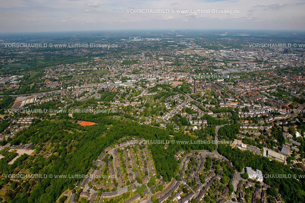ES10058272   Am Muehlenbach,  Essen, Ruhrgebiet, Nordrhein-Westfalen, Germany, Europa, Foto: hans@blossey.eu, 29.05.2010