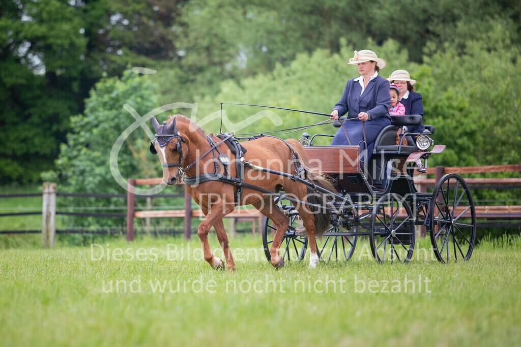 190525_Fahren-015 | Pferdesporttage Herford 2019 Fahren