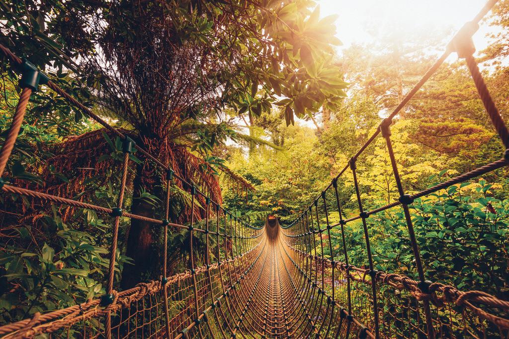 002-Lost gardens of heligan