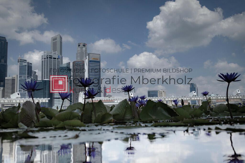 _Rainer_Schau_mberkholz_Singapur_IMG_7726 | Das Projekt